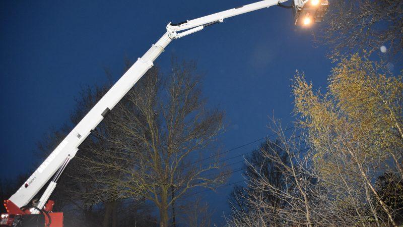 Zweefvliegtuigje landt in boom, brandweer brengt redding